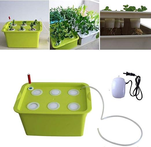 CRZJ Kit de Sistema hidropónico, Caja de siembra de plástico hidropónico para Cultivo de hortalizas, 6 Agujeros: Amazon.es: Hogar