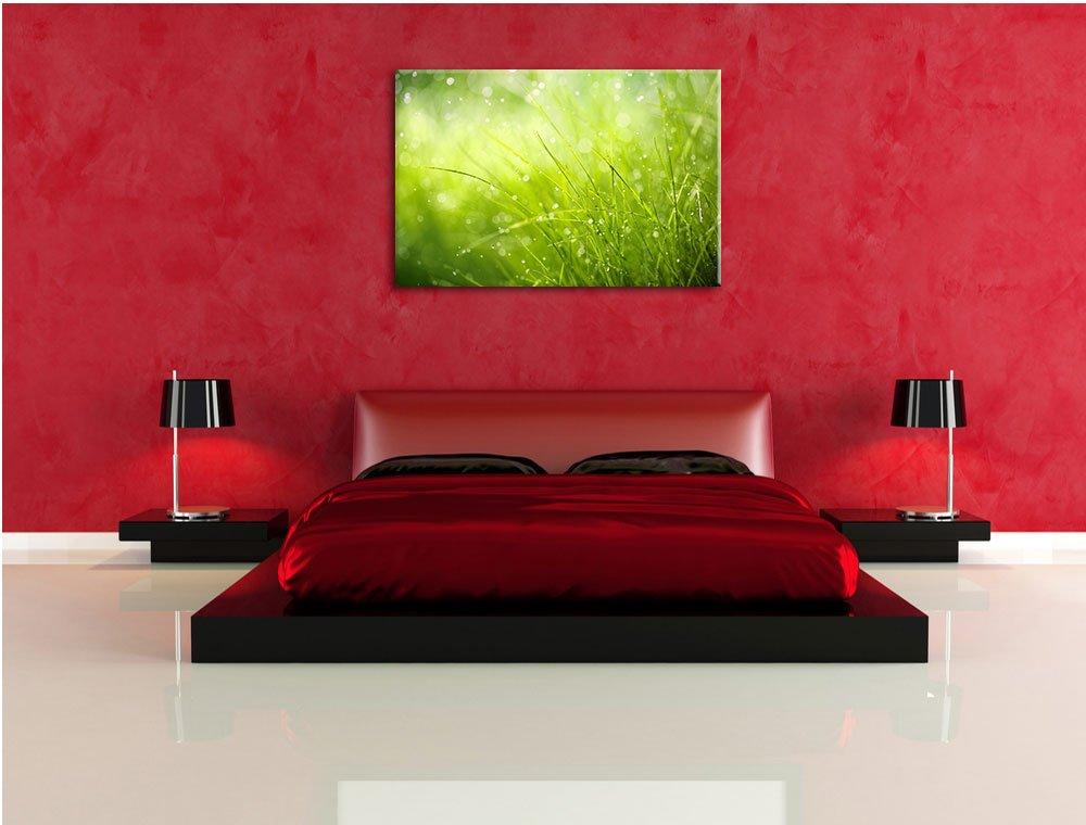 Nasses Gras Gras Gras Format  120x80 cm auf Leinwand, XXL riesige Bilder fertig gerahmt mit Keilrahmen, Kunstdruck auf Wandbild mit Rahmen, günstiger als Gemälde oder Ölbild, kein Poster oder Plakat 41d5b5