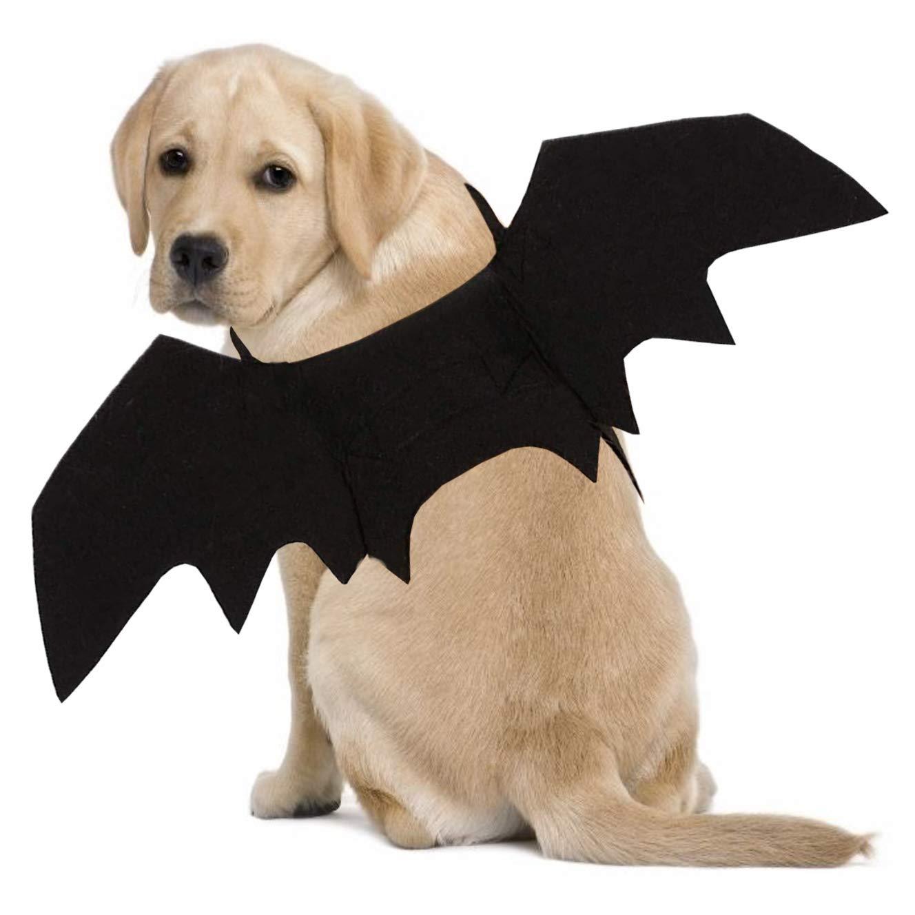 Ollypet Arnés para Disfraz de Halloween alas para Cachorros y ...