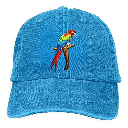aoliaoyudongyongpin Parrot Denim Baseball Caps Hat Adjustable Cotton Sport Strap Cap Men Women