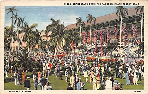 Grandstand from the Paddock, Miami Jockey Club Miami, Florida, FL, USA Old Vintage Horse Racing Postcard Post Card
