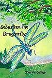 Sebastian the Dragonfly, Yolanda Cullagh, 1419646451