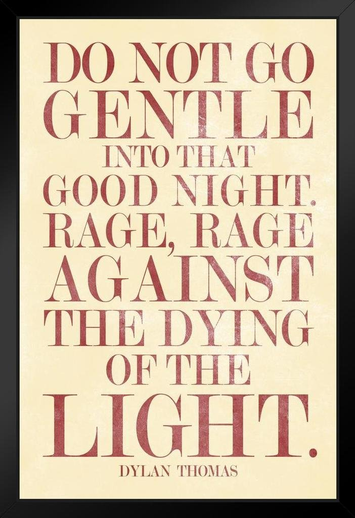 Dylan Thomas Do Not Go Gentle Into That Good Night Art Print Mural Giant Poster 36x54 inch