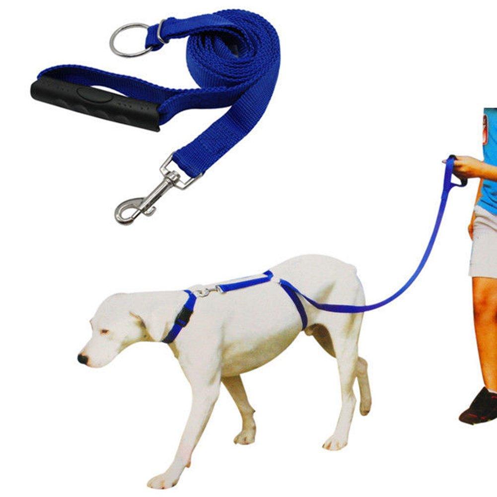 Pinkcream 2m Laisse pour chien Marche d'entraînement en nylon Longe pour chiens de grande taille