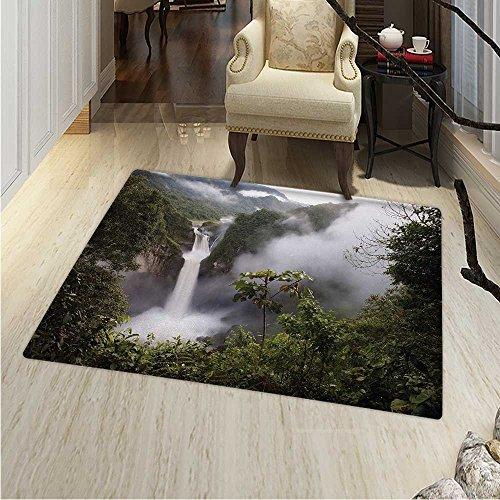 Rainforest Print Area rug San Rafael Falls Ecuador Misty Natural Waterfall in Lush Jungle Landmark Scene Perfect for any Room, Floor Carpet 48