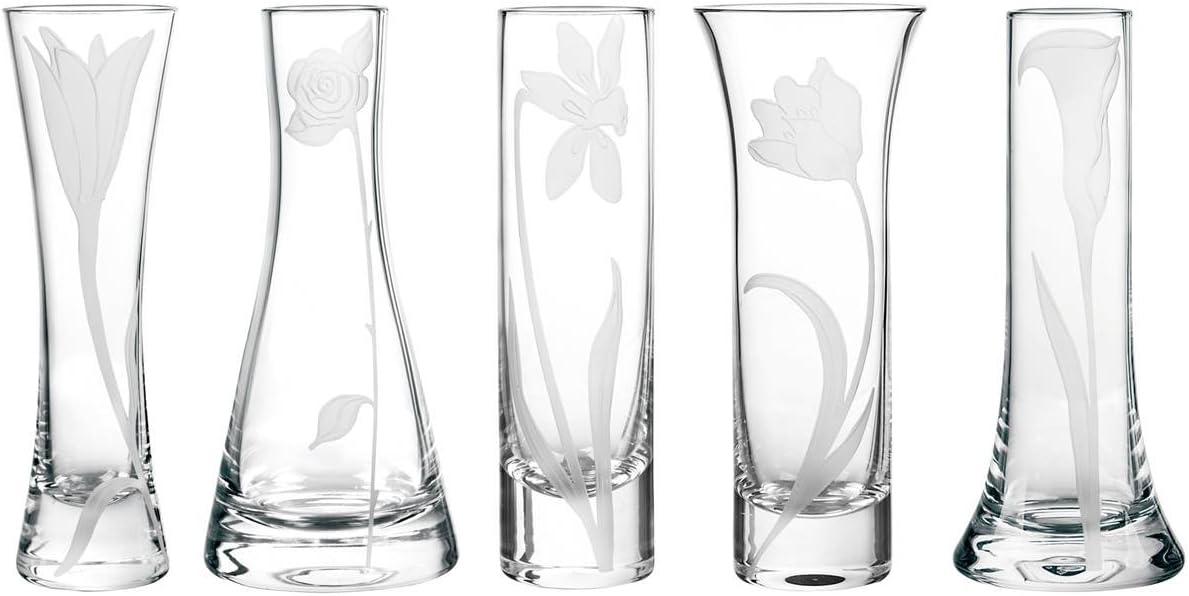 Qualia Glass Bouquet Mini Glass vases, Clear
