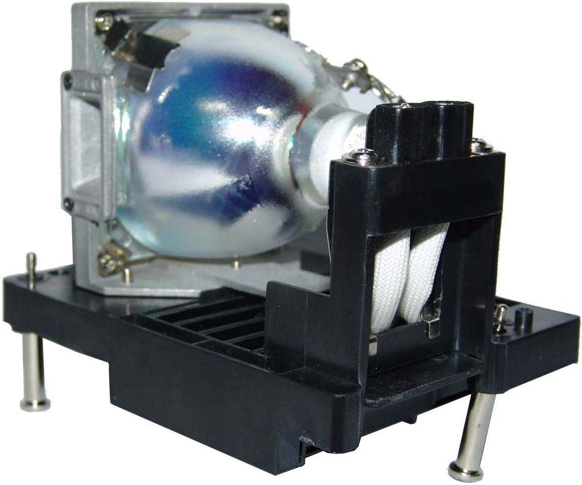 VT475 VT460 VT560 VT660 VT46RU VT460K VT465 GOLDENRIVER VT60LP Replacement Projector Lamp Compatible with NEC VT46