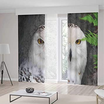 Amazon.com: Cortinas opacas para decoración de invierno ...