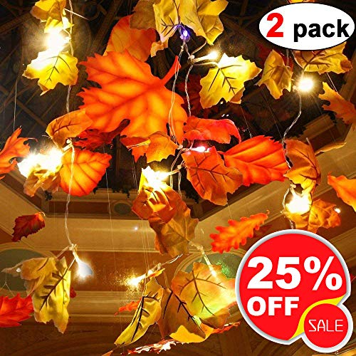 2 Pack Maple Leaves Garland String Lights 40 LED Lights 20ft Waterproof Fall Decoration Seasonal Lights for Holiday Party Indoor Outdoor Decor Birthday Gift 3AA Battery Operated]()