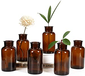 Bud Vases, Apothecary Jars, Decorative Amber Tall Bottles, Elegant Antique Decoration, Small Glass Flower Vases, Vintage Medicine Bottles for Home Decor Centerpieces, Events, Set of 6