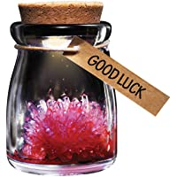 Crystal Garden Good Luck Wish Crystal in Glass Jar with Cork Stopper Grow Crystal, Red