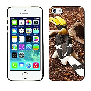 Hot Style Cell Phone PC Hard Case Cover // M00134430 Animal Beak Big Bird Black Colorful // Apple iPhone 5 5S 5G