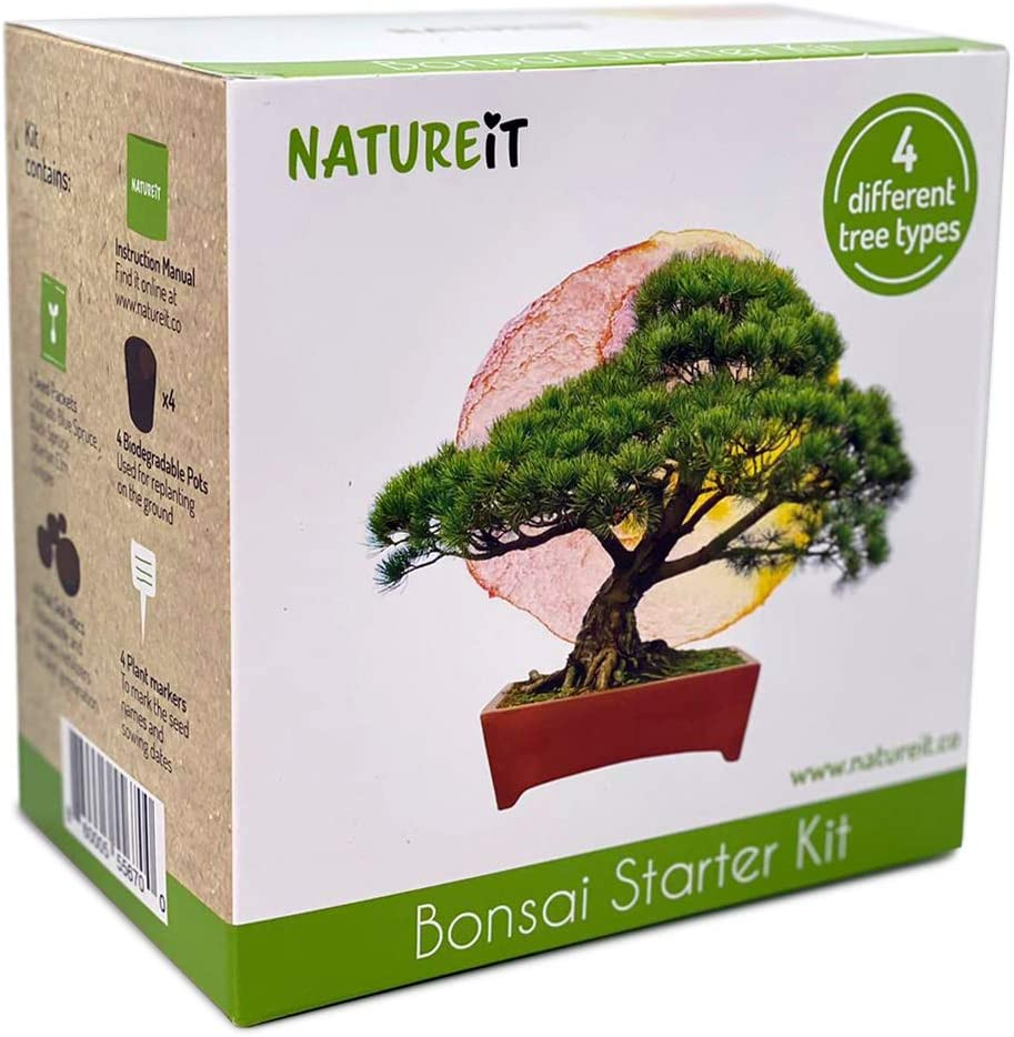 Bonsai Tree Seed Starter Kit - All You Need to Grow 4 Bonsai Trees from Seeds. All-in-One Indoor / Outdoor DIY Beginner Grow kit for Men & Women. Best Gift Idea for Mom and Dad who Have Everything