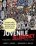 Cengage Advantage Books: Juvenile Delinquency : Theory, Practice, and Law, Siegel, Larry J. and Welsh, Brandon C., 111135359X