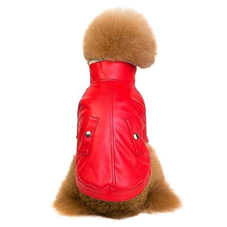 Ropa para Mascotas, Gusspower Chaqueta Espesar de Terciopelo Moda Cuero Cremallera Chaqueta Abrigo para Perro