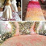BESKIT 3000 Pieces Silk Rose Petals Artificial