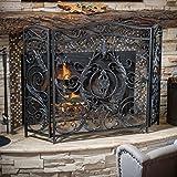 Mariella Black Silver Finish Floral Iron Fireplace Screen