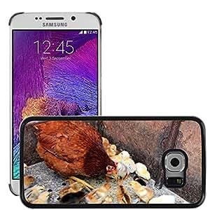 Etui Housse Coque de Protection Cover Rigide pour // M00135031 Pollo polluelos alimentación Gallina de // Samsung Galaxy S6 EDGE (Not Fits S6)