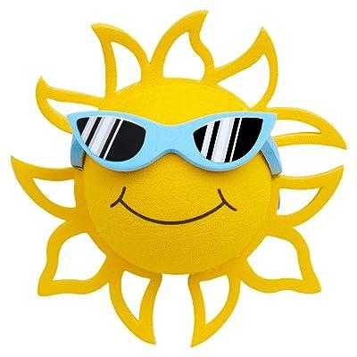 Coolballs California Sunshine w Sunglasses Car Antenna Topper/Rear View Mirror Dangler/Desktop Spring Stand Bobble (Blue Sunglasses): Automotive