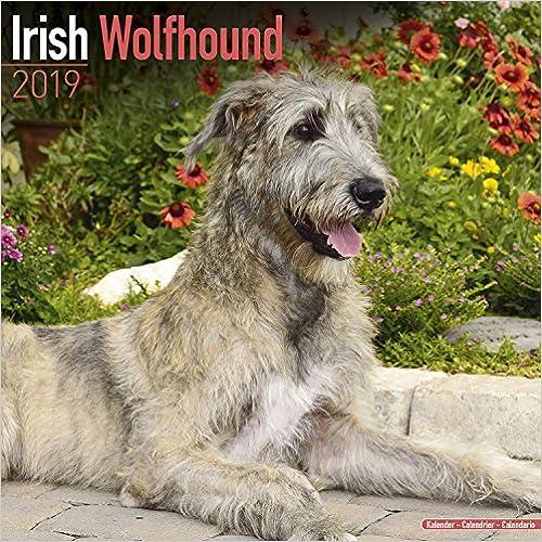 Irish Wolfhound Calendar 2019