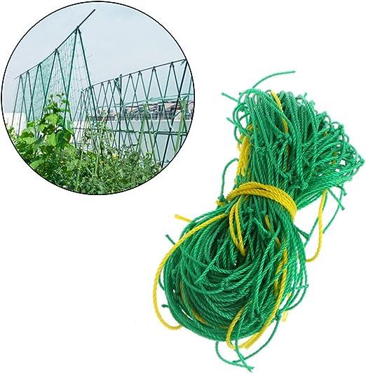 Dabixx Soporte para plantas de jardinería de nailon vegetal y ...