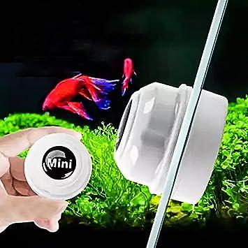 Gudelaa Mini Limpiador magnético de Cristal para Acuario, Limpiador de Algas, pecera, Tanque Limpiador: Amazon.es: Productos para mascotas
