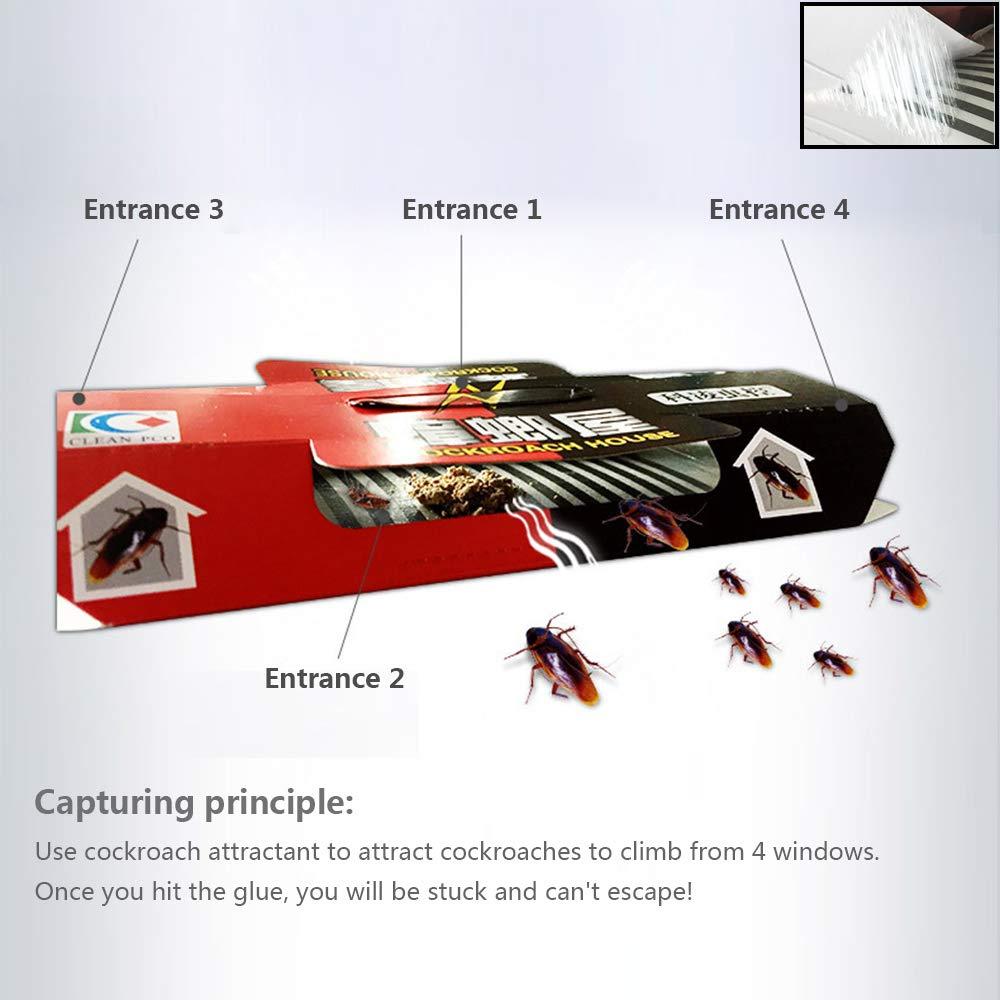 Surenhap 20Pcs Trappes Cafard Conseil r/épulsif Tueur app/ât meurtrier Fort Collant Insecte ravageur Catcher