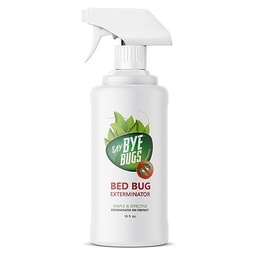 Best Bug Spray: Amazon.com
