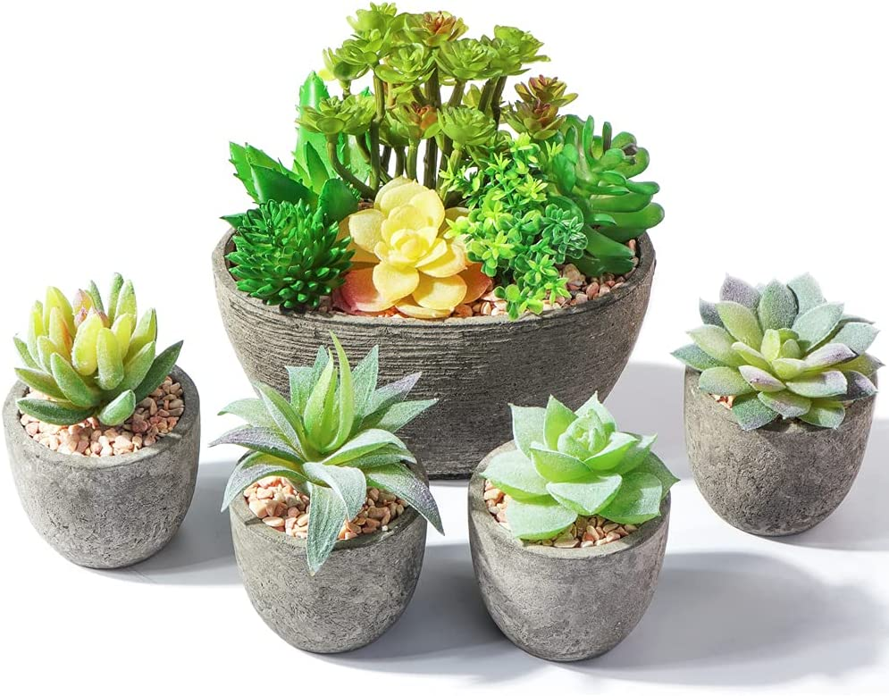 Succulents Plants Artificial in Pots, Small Fake Plants for Home Decor Indoor Mini Faux Succulent Potted Set of 5, Room Decor Office Desk Bathroom Gifts