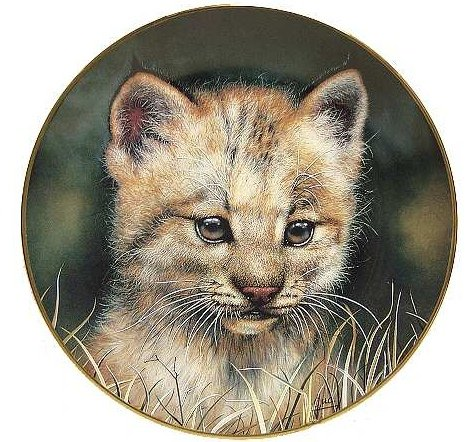 (Princeton Gallery - Limited Edition Collectible Plate LYNX CUB - Cubs of the Big Cats Plate Collection)
