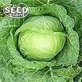 Copenhagen Cabbage Seeds - 500 Seeds NON-GMO