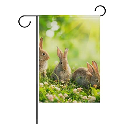 Amazon.com : Top Carpenter Beauty Art Easter Bunny Double-Sided ...