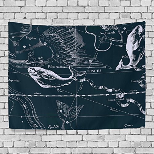 WellLee Wall Tapestry,Fantasy Constellation Graph Pisces,Dorm Throw Bedroom Living Room Window Doorway Curtain Home Decor,Tapestry Wall Hanging,80x60 Inch