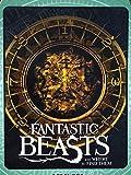 Fantastic Beasts Super Plush Throw Blanket 46' x 60'