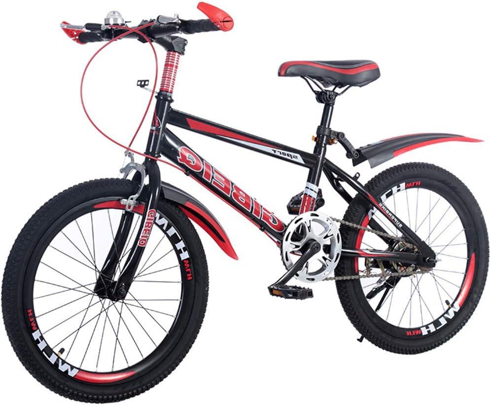 SJSF Y Bicicleta Infantil con Ruedas de 18/20/22
