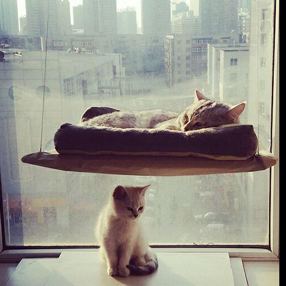 wiseminnie 20kg chat se fenêtre Siège hamac Perchoir Lit Coussin Étagère à suspendre