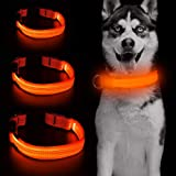 Clan_X LED Dog Collar USB Rechargeable - Glow in The Dark Dog Collars Light Up Doggie Collars Keep Your Pets Visible…