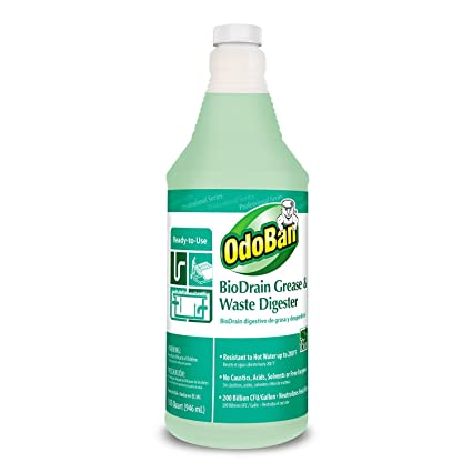 OdoBan 928062-Q12 RTU BioDrain Grease and Waste Digester, 1 qt Bottle - 12 Pack