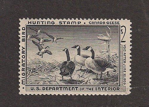 ck Hunting Stamp; Canada Goose. ()