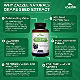 Zazzee Grape Seed Extract 20,000 mg Strength, 180