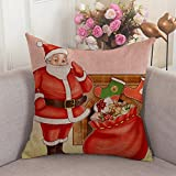 Alicia Haines Santa Posing With Bag Full Of Present Boxes In Front Of Fireplace Throw Pillow Covers,Cases,Decor For Couch,Chair,Sofa,Assorted Designs 18x18