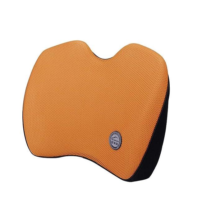 XAJGW Cojín de soporte lumbar para terapia postural - Espuma ...