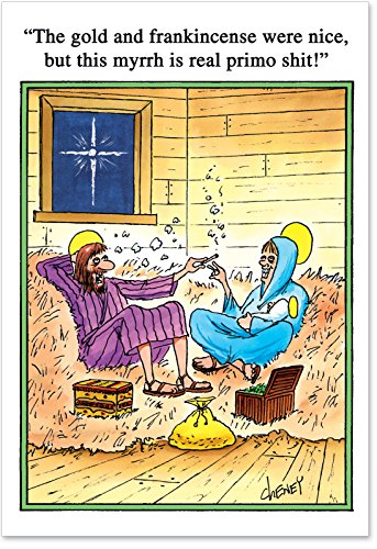 Christmas Nativity Card Scene (12 'Gold and Frankincense' Boxed Christmas Cards with Envelopes (4.75 x 6.625 Inch), Funny Nativity Scene Christmas Notes, Inappropriate Humor, Religious Humor, Silly Christmas Stationery B1001)