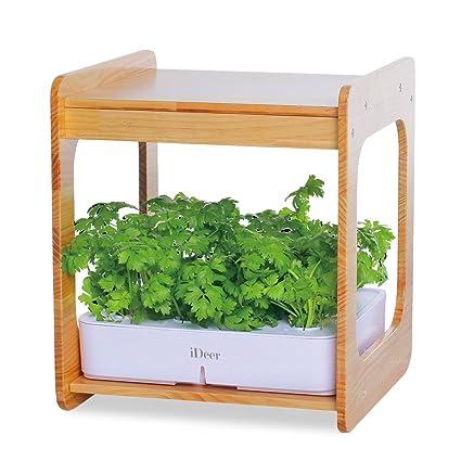 Amazon ideer life mee kitchen smart indoor gardening system w ideer life mee kitchen smart indoor gardening system wled plant grow light workwithnaturefo