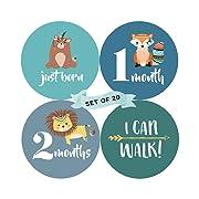 Baby Monthly Milestone Stickers (Set of 20) - Birth to 12 Months + 7 Bonus Achievement Stickers