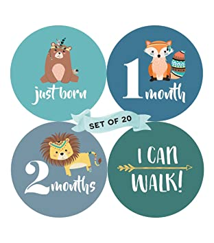 baby monthly milestone stickers set of 20 birth to 12 months 7
