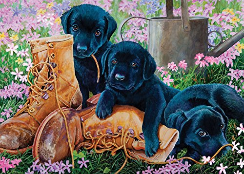 Cobble Hill Black Lab Puppies (Tray Puzzle) for sale  Delivered anywhere in Canada