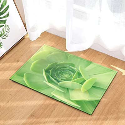 Bathroom Accessories. Succulent Plant Decoration. Bathroom Cushions. Non-Slip. 3D Hd Printing. Plant Pigments. 15.7 Inches X 23.6 Inches.: Kitchen & Dining