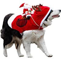 Royal Wise Running Santa Christmas Pet Costume