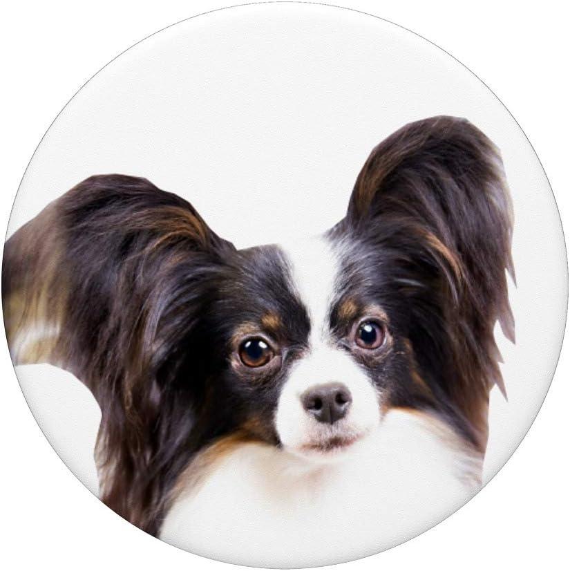 Amor Perros Frenchie Coraz/ón Bulldog Franc/és Propietario PopSockets PopGrip Agarre intercambiable para Tel/éfonos y Tabletas